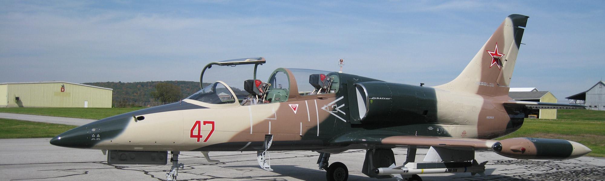 L-39 Jetflight in New York